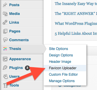 wordpress, thesis, favicon uploader