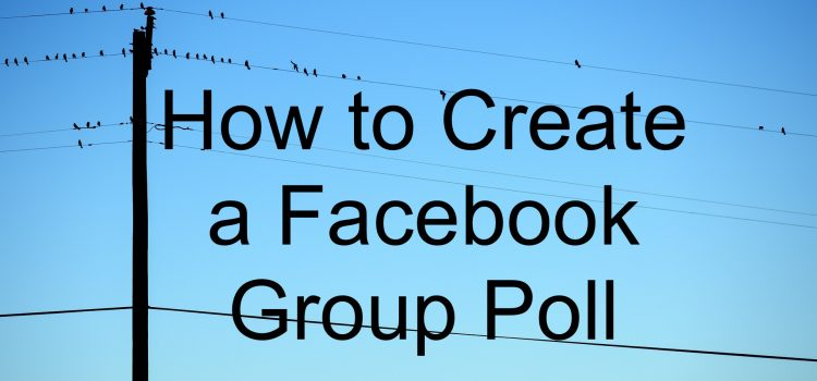 how to create a poll on facebook chat